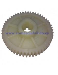 """Engranaje de plástico """"B"""" grande Exprimidor 923002 Eutron 52 dientes"""