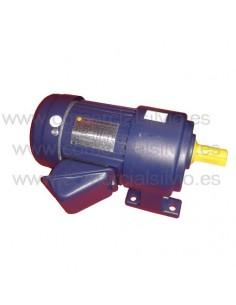 Motor Reductora exprimidor Eutron 923002 GV120B