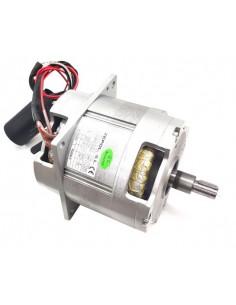 Grupo Motor Picadora Braher P22 1 CV  45043 40550