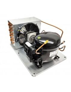 Unidad Condensadora 1/3HP con deshidratador RT EGAS100HLR R134a...